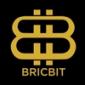 BricBit