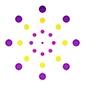 Pointnity Network