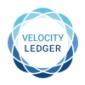 Velocity Ledger